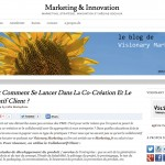 "Mon article en guest posting sur ""La co-creation et le collaboratif client sur le célèbre blog Visionary Marketing"